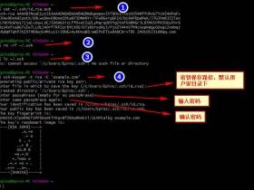 Git删除SSH的方法